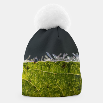 Thumbnail image of frozen leaf #1 Beanie, Live Heroes