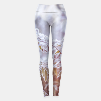 Thumbnail image of cold #1 Leggings, Live Heroes