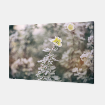 Thumbnail image of a frozen flower #1 Canvas, Live Heroes