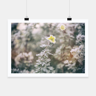Thumbnail image of a frozen flower #1 Poster, Live Heroes