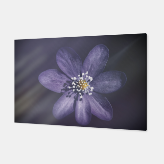 Thumbnail image of flowerpower #1 Canvas, Live Heroes
