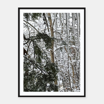 Thumbnail image of Icicles on The tree Framed poster, Live Heroes
