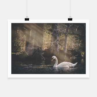 Thumbnail image of swan #1 Poster, Live Heroes