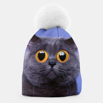 Thumbnail image of Humor Cat Beanie, Live Heroes