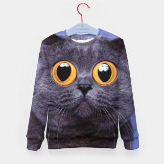Thumbnail image of Humor Cat Kid's sweater, Live Heroes