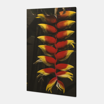 Thumbnail image of Heliconia Canvas, Live Heroes