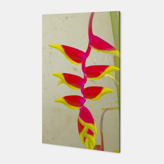 Thumbnail image of Heliconia 2 Canvas, Live Heroes