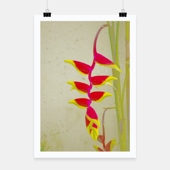 Thumbnail image of Heliconia 2 Poster, Live Heroes