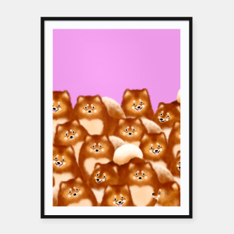 Thumbnail image of Pomeranians (Lilac Background) Framed poster, Live Heroes