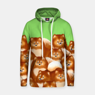 Thumbnail image of Pomeranians (Green Background) Hoodie, Live Heroes