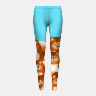 Pomeranians (Blue Background) Girl's leggings thumbnail image