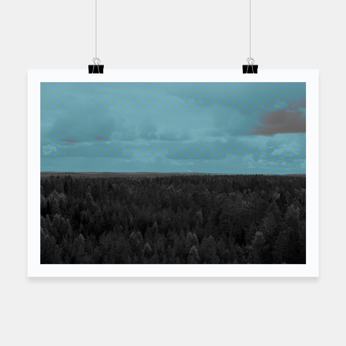 Image of Forest and blue sky Poster - Live Heroes