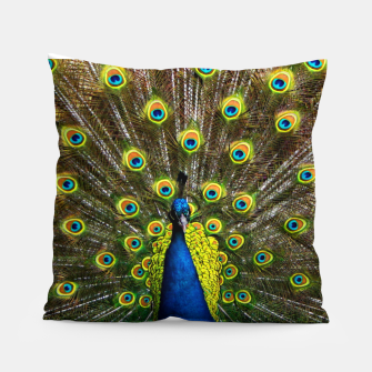 Colorful peacock Pillow thumbnail image