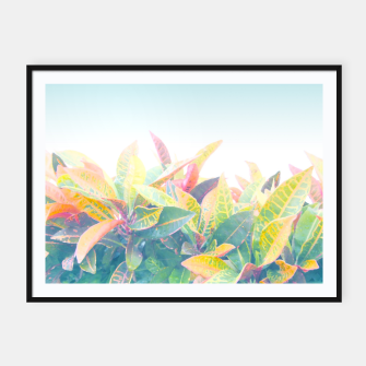 Thumbnail image of After the rain / Tropical Croton Leaves 4 Framed poster, Live Heroes