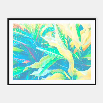 Thumbnail image of tropical croton leaves 3 Framed poster, Live Heroes