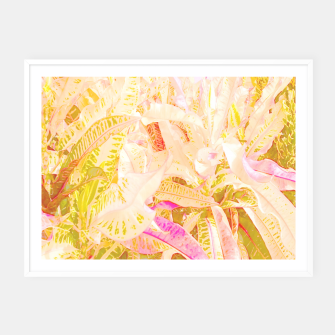 Thumbnail image of Tropical croton leaves 2/2 Framed poster, Live Heroes