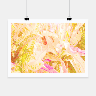 Thumbnail image of Tropical croton leaves 2/2 Poster, Live Heroes