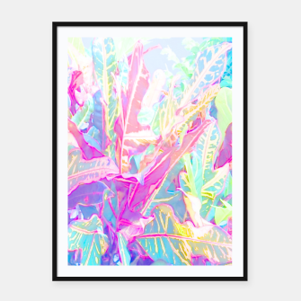 Thumbnail image of Tropical croton leaves 1/2 Framed poster, Live Heroes