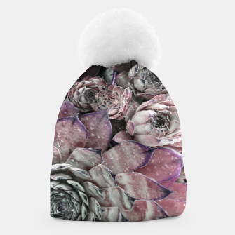 Thumbnail image of Succulent Closeup In Pink Beanie, Live Heroes