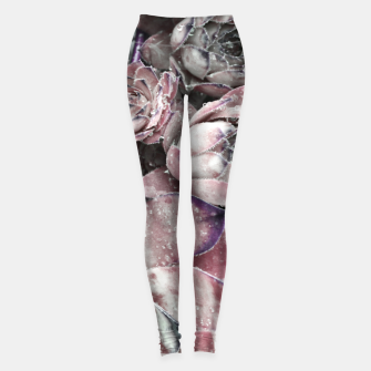 Thumbnail image of Succulent Closeup In Pink Leggings, Live Heroes