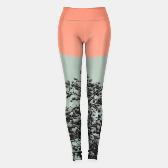 Thumbnail image of Snowy pine tree Leggings, Live Heroes