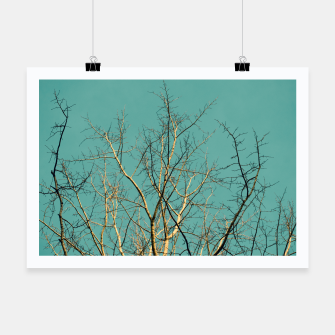 Thumbnail image of Branches Poster, Live Heroes