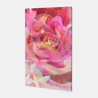 Thumbnail image of blooming pink rose texture abstract background Canvas, Live Heroes