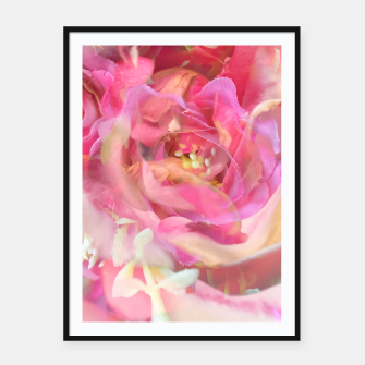 Thumbnail image of blooming pink rose texture abstract background Framed poster, Live Heroes