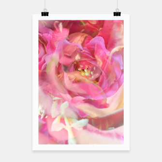 Thumbnail image of blooming pink rose texture abstract background Poster, Live Heroes
