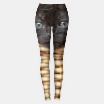 Thumbnail image of Cats Leggings, Live Heroes
