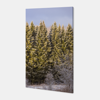 Miniatur Sunny winter forest Canvas, Live Heroes