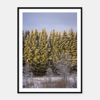 Thumbnail image of Sunny winter forest Framed poster, Live Heroes