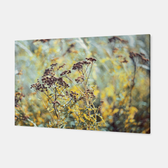 Thumbnail image of Meadow Canvas, Live Heroes