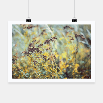 Thumbnail image of Meadow Plakat, Live Heroes