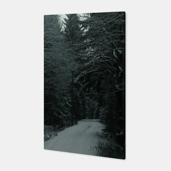 Miniatur Winter path Canvas, Live Heroes