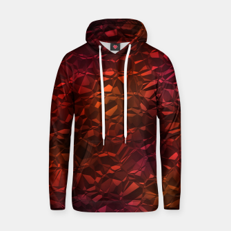 Thumbnail image of Christalline Rainbow Color - 05 Hoodie, Live Heroes