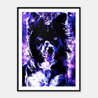 Thumbnail image of border collie dog lying down watercolor splatters cool blue purple Framed poster, Live Heroes