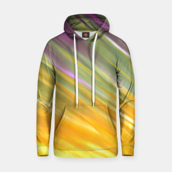 Thumbnail image of Golden Aurora Hoodie, Live Heroes