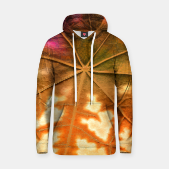 Thumbnail image of Leaf Incredible, Amber Hoodie, Live Heroes