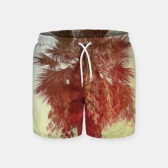 Miniatur Palm trees Swim Shorts, Live Heroes