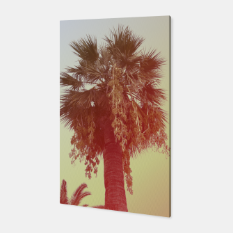 Miniatur Palm trees Canvas, Live Heroes