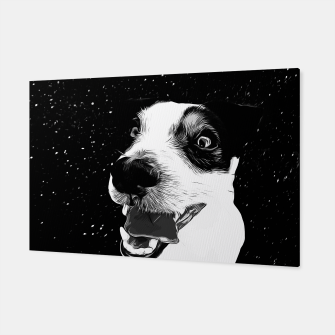 jack russell terrier dog space crazy va bw Canvas thumbnail image