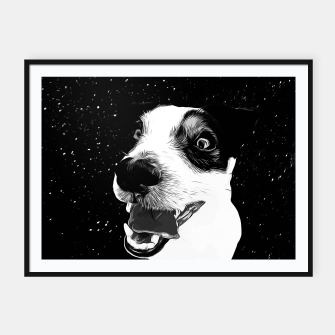 jack russell terrier dog space crazy va bw Framed poster thumbnail image