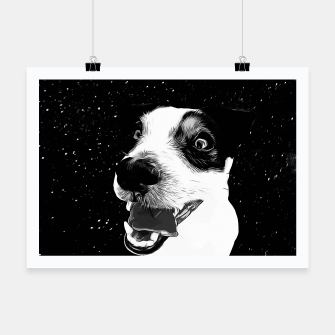 jack russell terrier dog space crazy va bw Poster thumbnail image