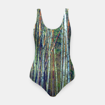Birch forest  Swimsuit thumbnail image