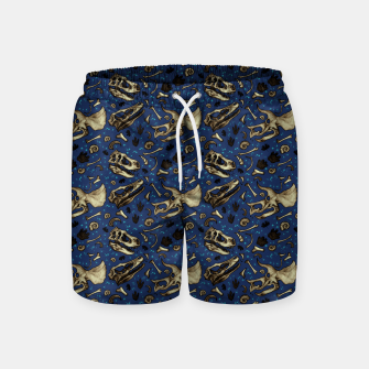 Fossil Bed Pattern Swim Shorts thumbnail image
