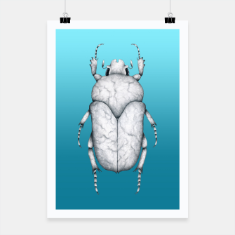 Marble Beetle (Blue Gradient Background) Poster miniature