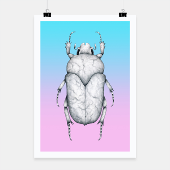 Marble Beetle (Pink and Blue Gradient Background) Poster miniature