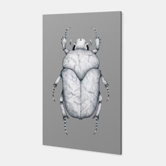 Thumbnail image of Marble Beetle (Grey Background) Canvas, Live Heroes