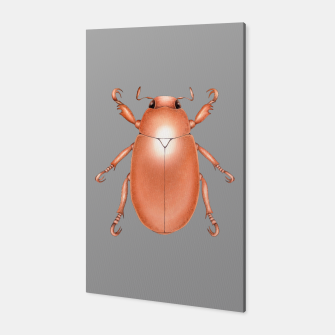 Copper Beetle (Grey Background) Canvas thumbnail image
